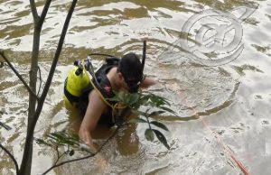 No rio Bananeiras
