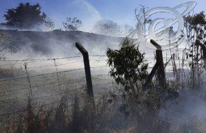 Incêndio na vegetação