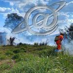 Bombeiros combatem incêndio