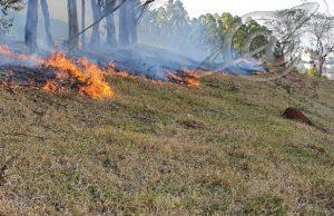Incêndio no bairro São Dimas